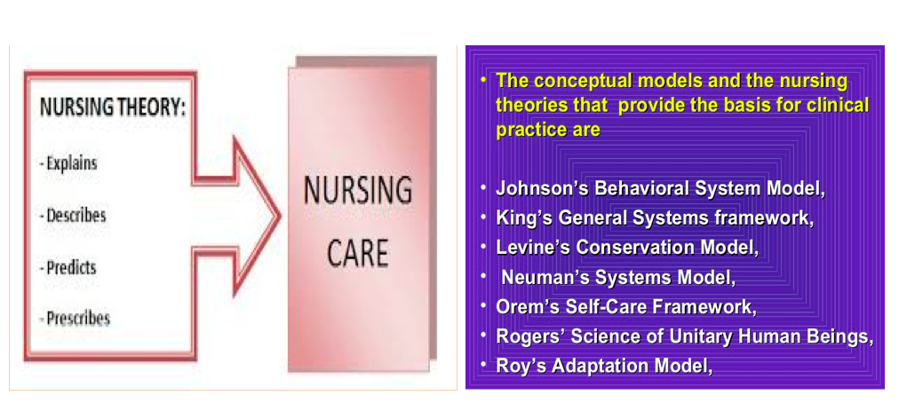 understanding nursing models advanced help in your nursing dissertation